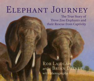 ElephantJourney_LR_RGB-2